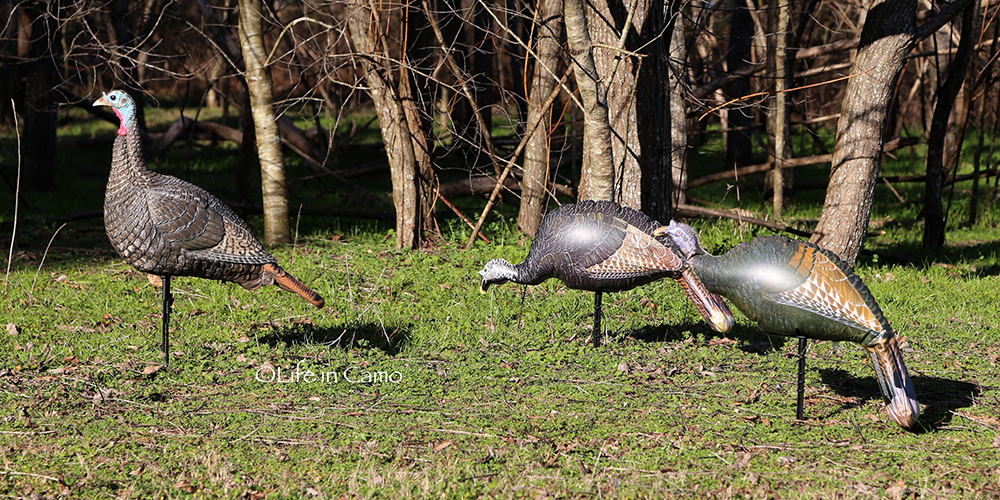 turkey-decoys-1