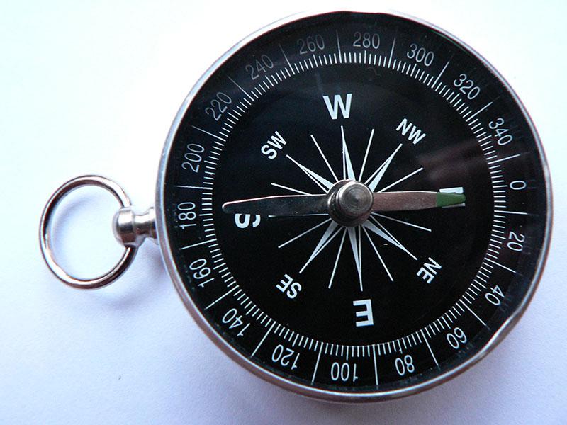 IMAGE2 FloatingNeedleCompass