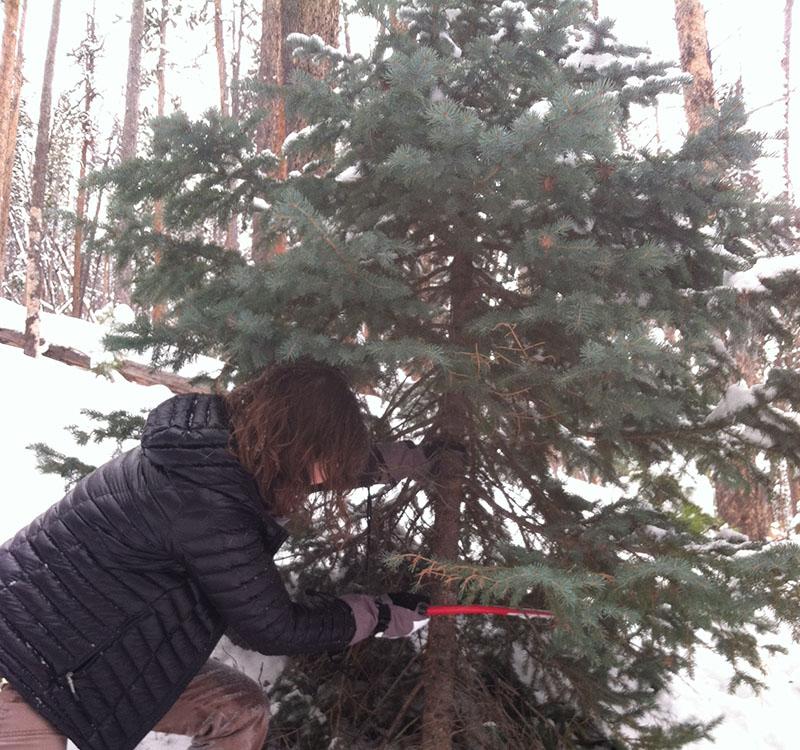 winter-activities-4