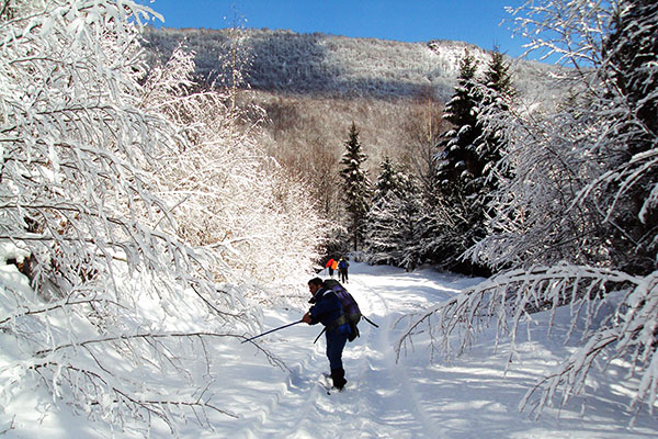 Five Winter Activities For Outdoorsmen And Women