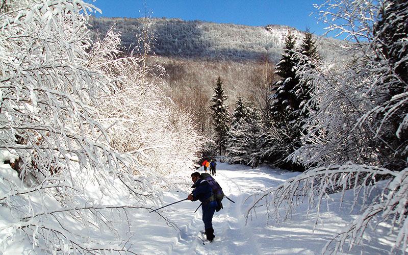 winter-activities-1