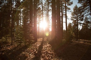 Five Tips To Help You Get Outdoors This Year