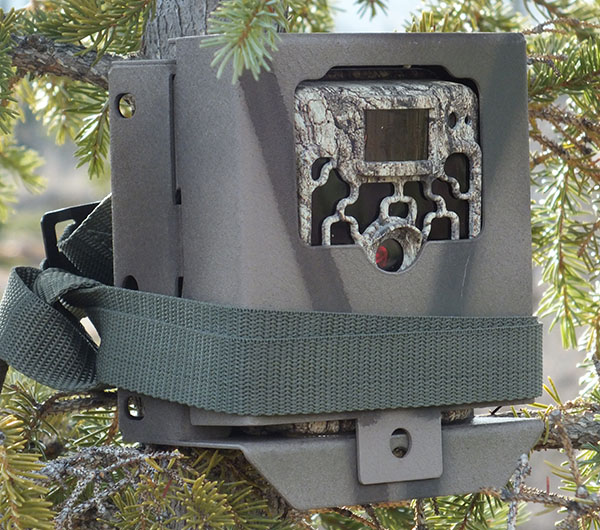 trail-cam-theft-5