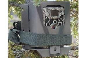 Protect Your Trail Camera From Theft