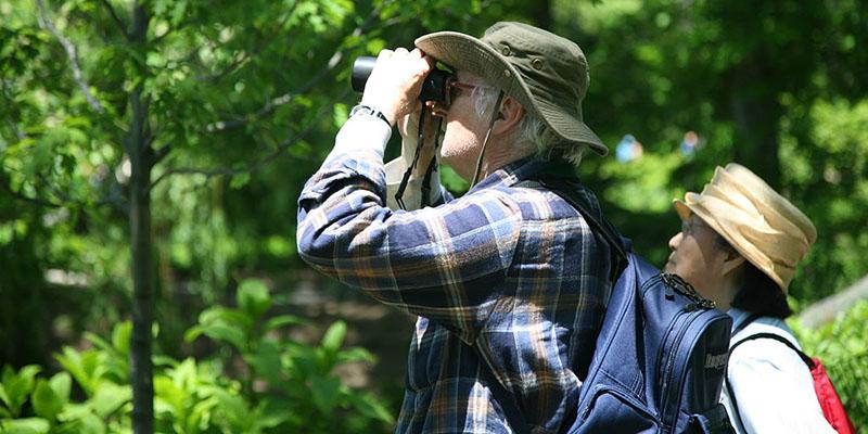 birding-basics-1