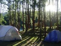 pro-camping-thumb