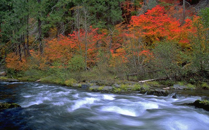 fall-camping-tips-1