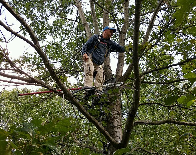 treestand-safety-2