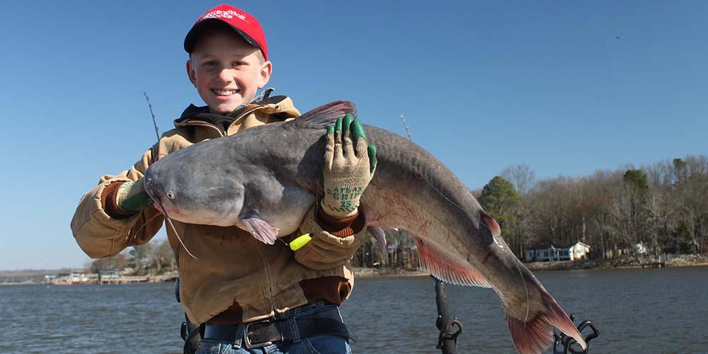 catfish-fishing-2