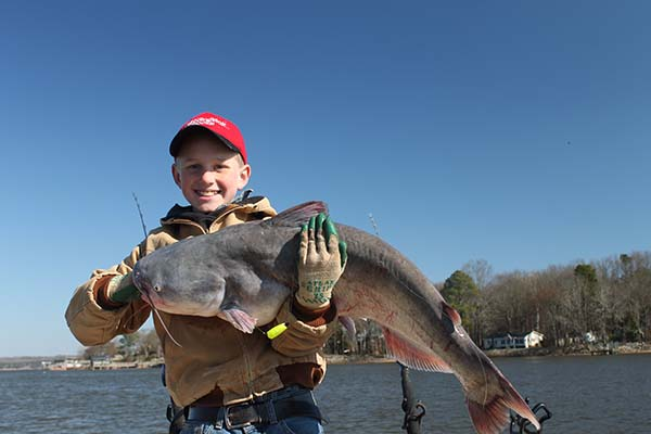 Catfish fishing tips the blog of the 1800gear store for Catfish fishing gear