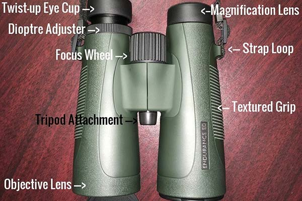 binocular-anatomy-thumb