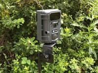 Hawke Nature Camera 12MP Review