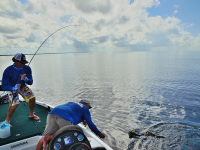 Which Fishing Rod Or Rods Are Best For Me?