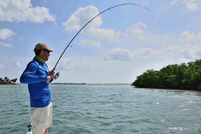 fishing-rod-materials-thumb
