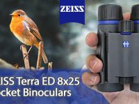 ZEISS Terra ED Pocket Binocular 8x25 Review