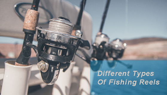 difference between fishing reels